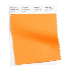 PANTONE 14-1050 Marigold 金盞花橘:舒適的黃橘色調帶來溫暖的視覺。