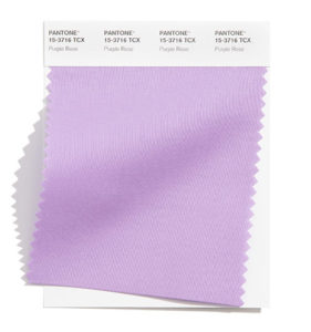 PANTONE 15-3716 Purple Rose 紫玫瑰:神祕的紫玫瑰傳遞魅人的訊息。