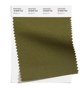 PANTONE 18-0529 Sphagnum 泥炭蘚綠:覆滿地上的苔蘚綠色。